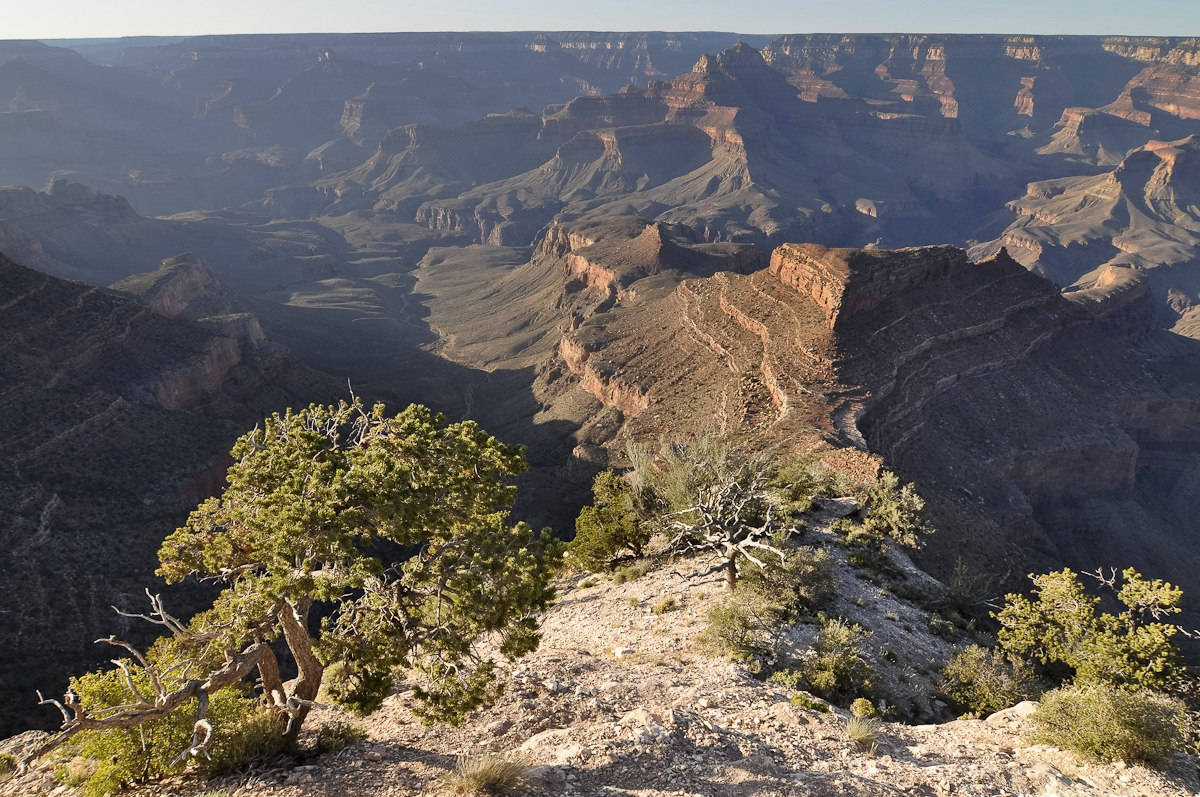 galleries-grand-canyon-11