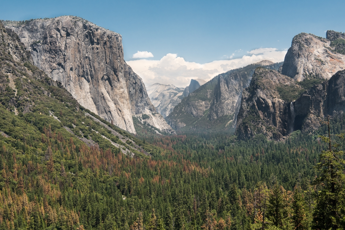 galleries-yosemite-1